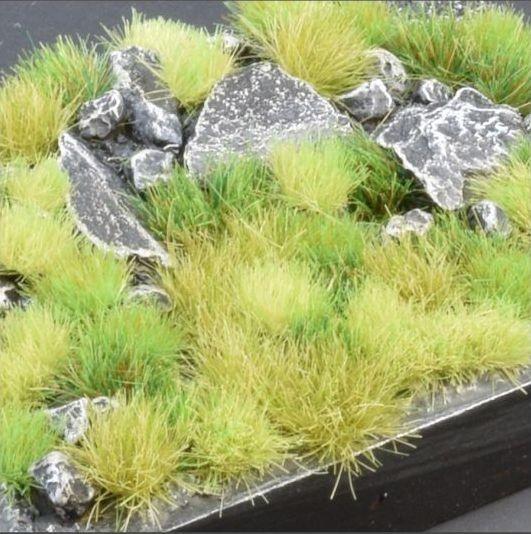 Green Meadow Set (Wild)